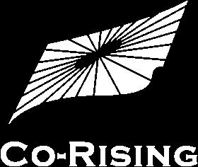 株式会社コライジング